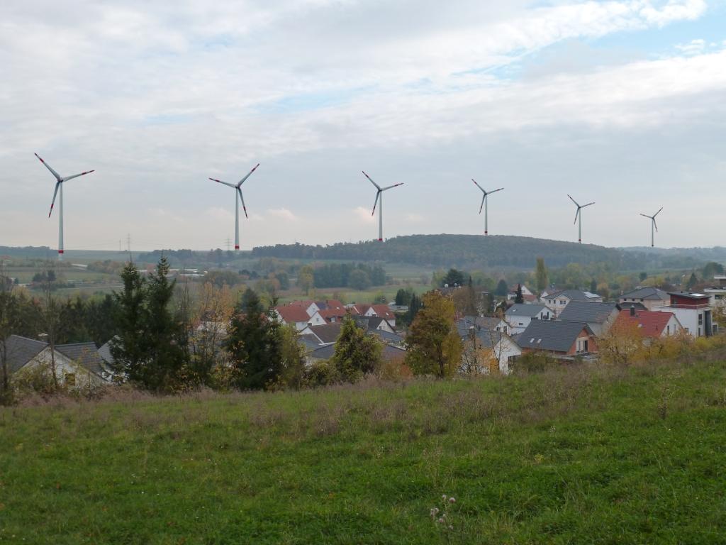 wp-bn-steinfurth-002-dunkel-1024
